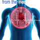 Thinking from the Heart – Heart Brain Science